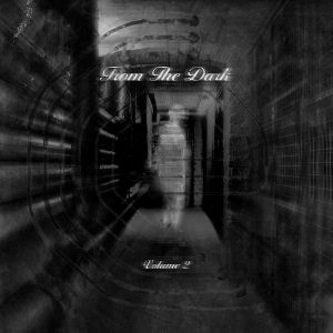 V.A. - From the Dark Vol 2  (CULTIVATED ELECTRONICS)