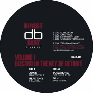 V.A. - Electro in the Key of Detroit Vol 1  (DIRECT BEAT)