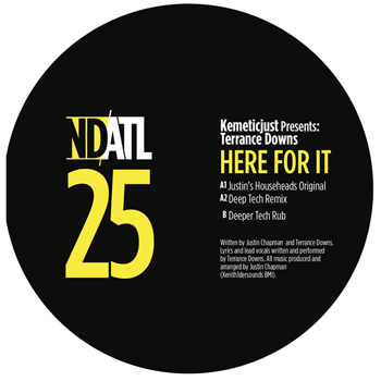 KemeticJust presents Terrance Downs - Here For It  (NDATL Muzik)